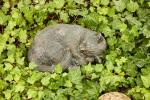 Rottenecker Bronzefigur Katze, kuschelnd