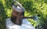 Rottenecker Bronzefigur Gießkanne mit Sprühkopf
