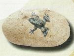 Rottenecker Bronzefigur Mini-Frosch mit Flusskiesel Lamos