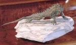 Rottenecker Bronzefigur Gecko, mittel, mitStein