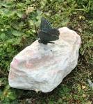 Rottenecker Bronzefigur Schmetterling auf Rosario Findling