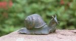 Rottenecker Bronzefigur Schnecke, klein