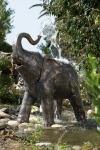 Rottenecker Bronzefigur Baby-Elefant