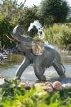 Rottenecker Bronzefigur Junger Elefant