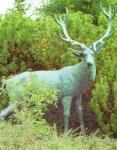 Rottenecker Bronzefigur Hirsch - lebensgroß