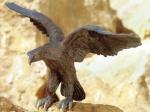 Rottenecker Bronzefigur Adler