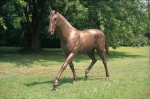 Rottenecker  Bronzefigur Pferd Limbo
