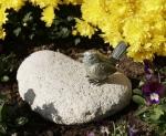 Rottenecker Bronzefigur Vogel