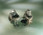 Rottenecker Bronzefigur Gute-Laune-Frosch, wasserspeiend