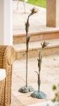 Rottenecker Bronzefigur Strelizie klein, silber