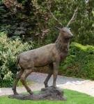 Rottenecker Bronzefigur Hirsch